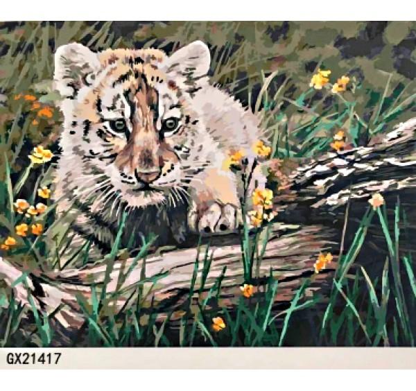 Картина (раскраска) по номерам № 21417