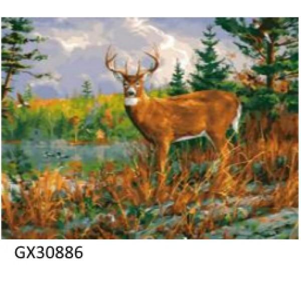Картина (раскраска) по номерам № 30886